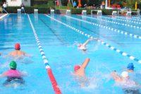 Triathlon-Foto für HP